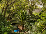 14 Calavera Jardin 001